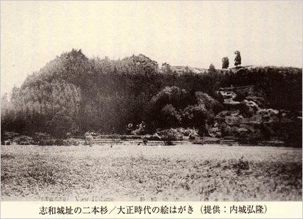 志和城址の二本杉